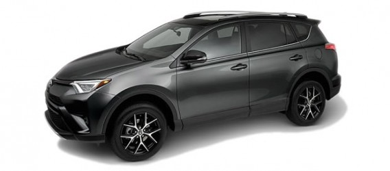 rav4-color-4