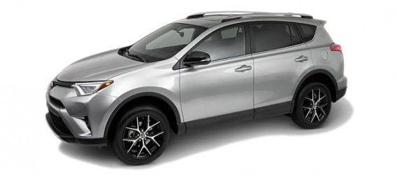 rav4-color-5