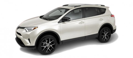 rav4-color-6